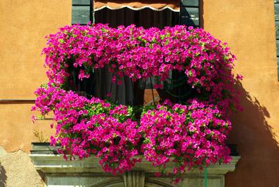 Artigiano andrea realizzazione e manutenzione giardini e - Arredo terrazzi e balconi ...